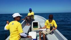 Tiedonkeruu Belizessä