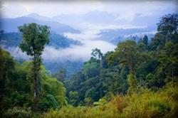 Natur & Miljö