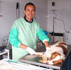 Veterinär & Djurvård