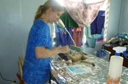 Eläinlääkäri vapaaehtoistöissä Samoalla